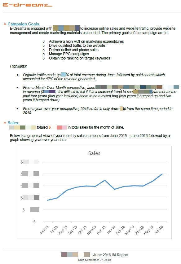 Case Study Custom Monthly Digital Marketing Reports  EDreamz