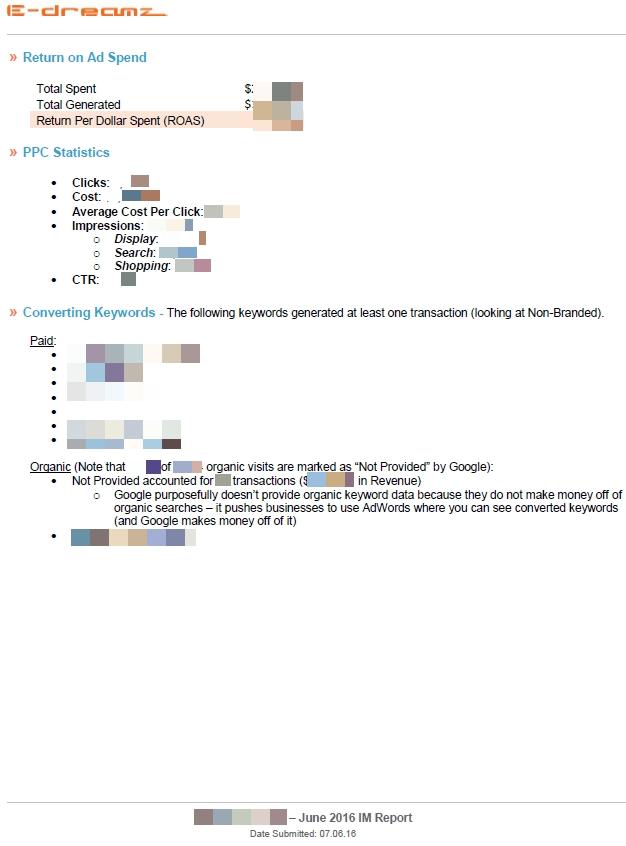 Case Study Custom Monthly Digital Marketing Reports  EDreamz