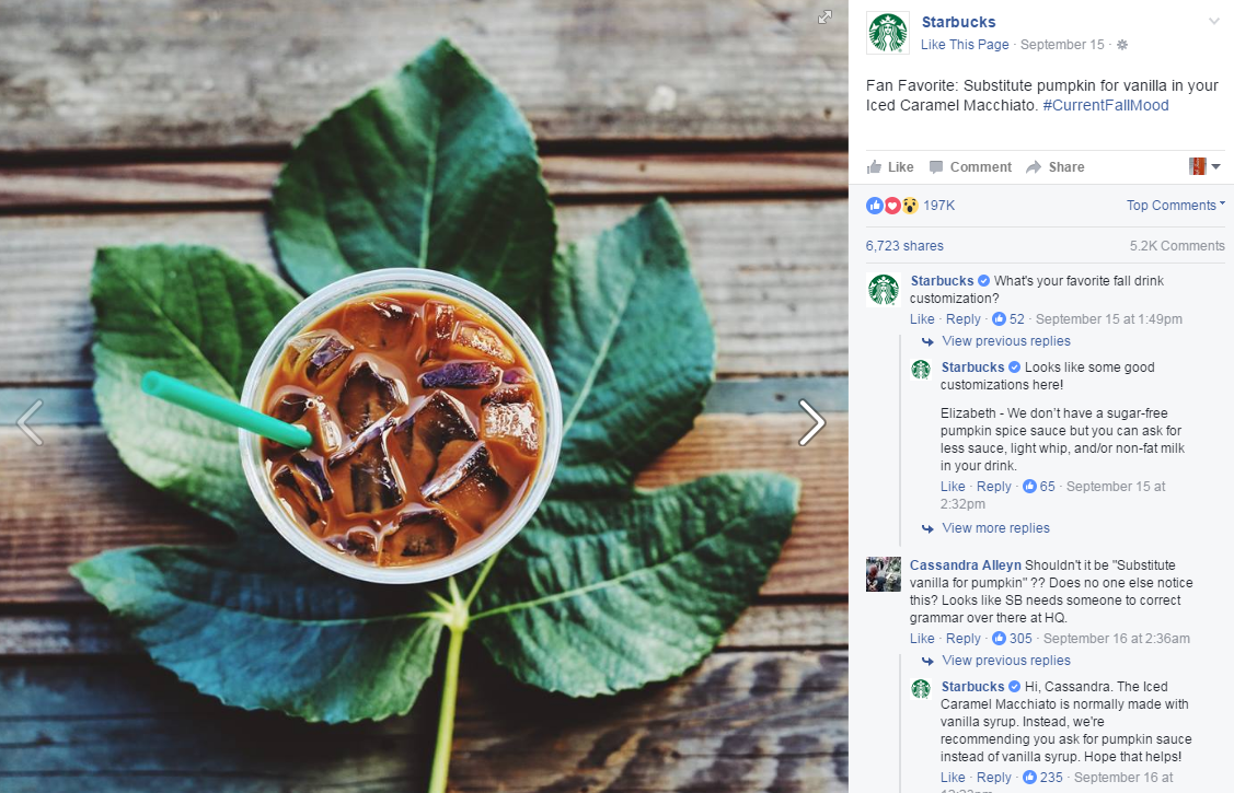 Instagram Ads vs  Facebook Ads: Which is Best for Your Brand?   E-dreamz